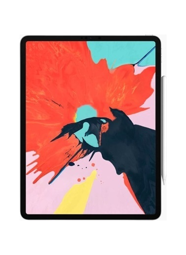 Apple iPad Pro 11 inç Wi-Fi 64 GB MTXN2TU/A Renkli